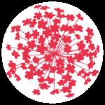 Kay's Logo