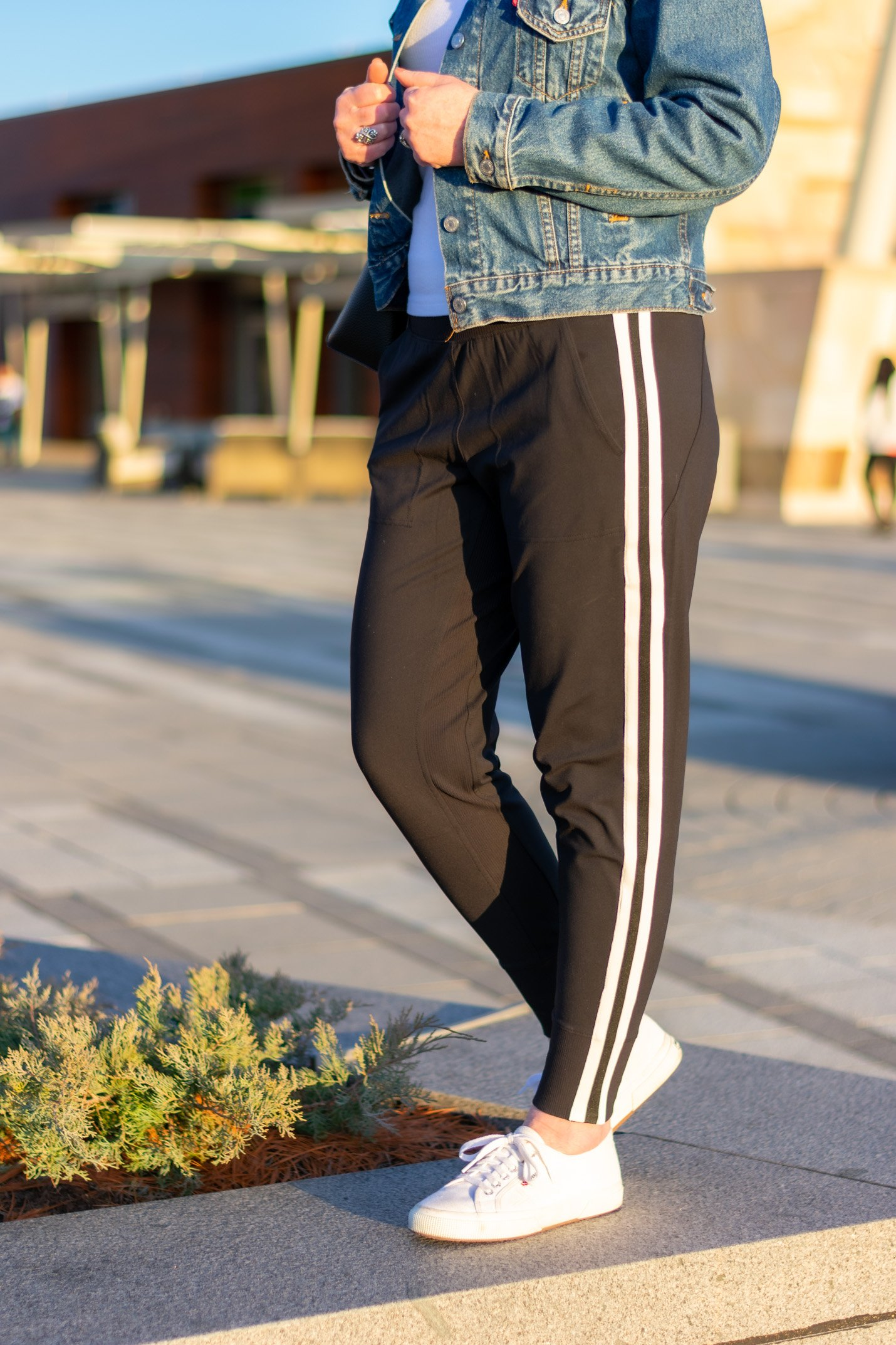 Venice Side Stripe Joggers